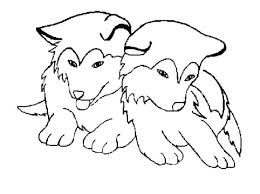 Cat Dog Coloring Pages Auchmar
