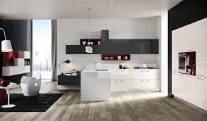 Red White Kitchen Charcoal Red White Kitchen Interior Design Ideas