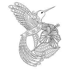 Nature Details Vectoren Illustraties En Clipart 123rf