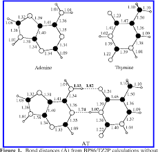 Figure 1 From Hydrogen Bonding In Dna Base Pairs