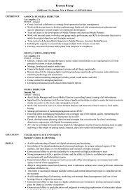 Director Sample Resume Media Director Resume Samples Velvet Jobs