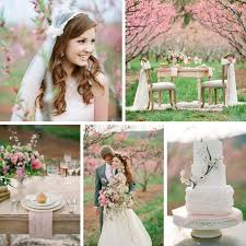 beautiful blossom filled spring wedding ideas in an orchard
