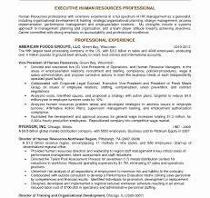 Professional Resume And Cover Letter Writing Services Kickspayless Com