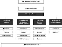 Consulting Company Org Chart Aviyaan