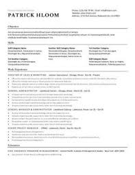 Resume Layout 10 Economic Template