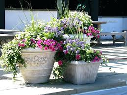 patio plants in pots ideas chic planting ideas for patio pots ideas for flower planters landscape