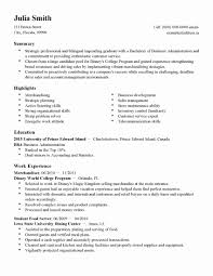 Resume Examples Templates Best 10 Printable Template Ideas Beauteous ...