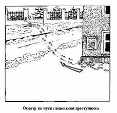 Реферат Тактика следственного осмотра com Банк  Тактика следственного осмотра