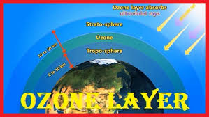 ozone layer protection of ozone layer ozone layer essay  ozone layer · essay