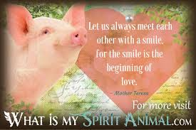 Pig Quotes Sayings Animal Quotes Sayings