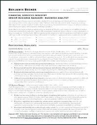 Cfo Resume Examples Cool Cfo Resume Templates Thewokco