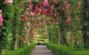 Small Picture Top 25 best Garden Archway Designs Garden Arch Designs
