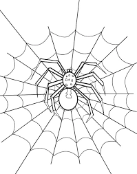 Small Picture Spider Web Coloring Page NetArt