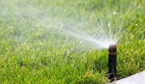 Image result for reputable lawn maintenance company