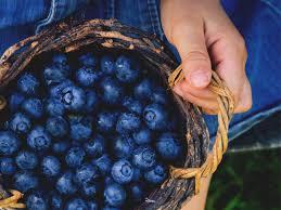 Image result for blueberries