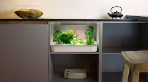 Grow fresh herbs all year long... in your kitchen cabinet! The Vegidair  rack makes it easy to create your very own mini-farm.