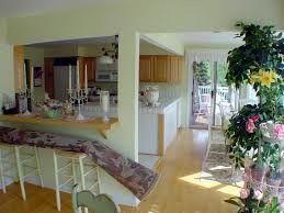 Narrow Kitchen Decorate Narrow Kitchen Island Wonderful Kitchen Design Ideas