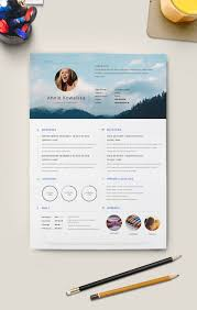 mini stic resume template for graphic designers good resume mini stic resume template for graphic designers