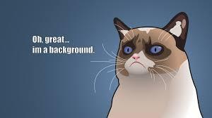 grumpy cat wallpapers id 524147
