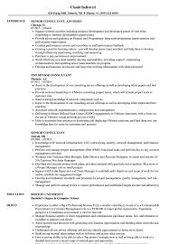 It Consultant Resume Sample Senior Consultant Resume Samples Velvet Jobs