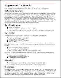 Programmer CV Sample