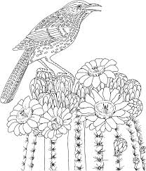 Spring Birds Coloring Pages With Adult Coloring Pages Birds Free
