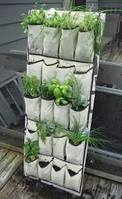 gardening on a budget diy vertical gardening repurpose a shoe organizer into a vertical