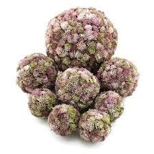 Sedum Kugel Rosa Sedum Ball Fette Henne Künstlich Sehr Dekorativ