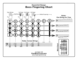 string electric bass fingering chart and flashcards fingering Bass Notes Diagram free bass fingering chart bass notes diagram