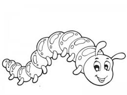 Small Picture Bugs Coloring Template Coloring Coloring Pages