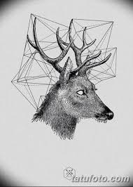 эскиз тату олень 23022019 133 Sketch Tattoo Deer Tatufotocom
