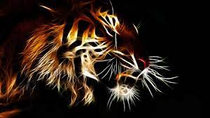 54+ Tiger Hd Wallpapers on WallpaerChat