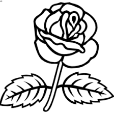 Small Picture Coloring Pages Roses Carolina Rose Or Pasture Rose With Coloring