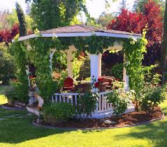garden gazebo. Crawling Vines Are The Fastest Way To Incorporate Your Gazebo With Landscape And Garden. Garden