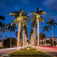 delray beach tree lighting. royal palm tree christmas lights beach island delray lighting