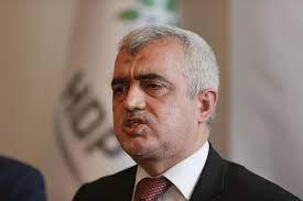 HDP's Gergerlioğlu released after detention - Turkey News