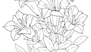 Flower Coloring Pages Printable Free Flower Colouring Pages For