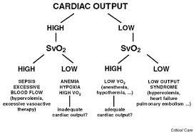 Oxygen Consumption Chart Svo2 Mixed Venous Oxygen Saturation Vo2 Oxygen Consumption