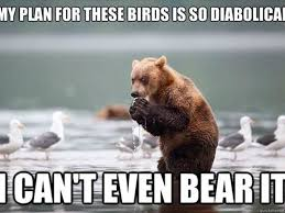 Can These Hilarious Animal Memes Make You Laugh? | PlayBuzz via Relatably.com