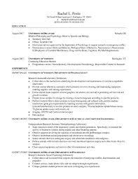 doc finance skills based resume cv template examples computer technician resume skills template