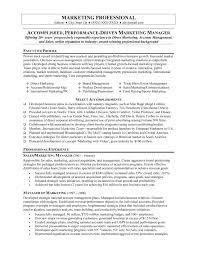 sample resumes for marketing professionals marketing director