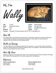 Pet Resume