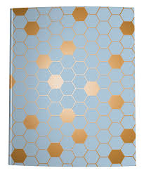 Hexagon Graph Paper Notebook Blue Brown