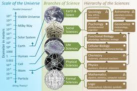 Science Project Chart Work Branches Of Science Wikipedia