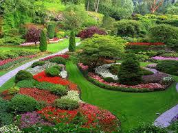 Small Picture garden creators clearwater designs bay areasacramento valley ca