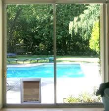 sliding glass door dog door best patio dog door for sliding glass door sliding glass door sliding glass door dog
