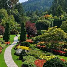 butchart gardens map. Immerse Yourself In Thousands Of Colorful Blooms At The Butchart Gardens. Gardens Map