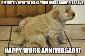 From all of us… happy anniversary! Happy Work Anniversary 101 Professional Milestone Wishes