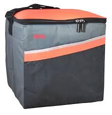 <b>Изотермическая сумка Thermos Classic</b> 36 Can 27 L [517029]