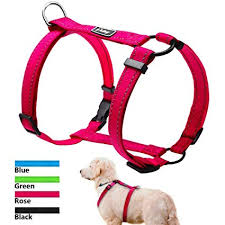 Didog No Pull Dog Walking Harness Dog Walking Harness Easy For Small Medium Large Dogs